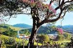 imagem de Consolação Minas Gerais n-8