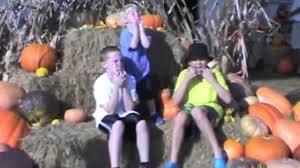 White Oak Pumpkin Patch by Maze Dayz Fall Festival Maze And Pumpkin Patch Youtube