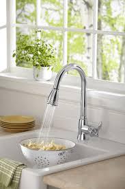 Moen Sage Kitchen Faucet by 33 Best Beautiful Kitchen Sinks Images On Pinterest Beautiful