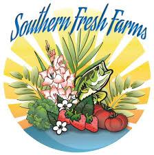 Pumpkin Patch Bonita Springs Fl by Southern Fresh Farms Fall Festival Florida Food U0026 Farm