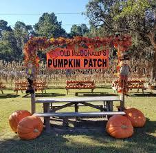 Free Pumpkin Patch Houston Tx by Old Macdonald U0027s Farm Home Facebook