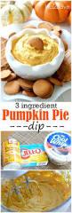 Libbys Pumpkin Pie Spice by Best 25 Pumpkin Pie Mix Ideas On Pinterest Pumpkin Pie Cake