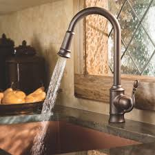 Moen Sage Kitchen Faucet by To Caring Oil Rubbed Bronze Kitchen Gallery Also Rustic Faucet