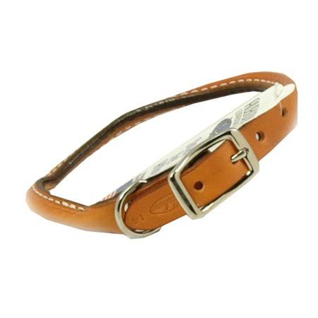 Auburn Leathercrafters Rolled Dog Collar - Round, Tan