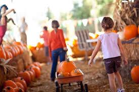 Pumpkin Patch Pueblo County by Fall Pumpkin And Harvest Festivals 2017 In Colorado The Denver Ear
