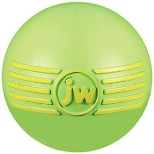 Jw Pet Company Isqueak Ball Dog Toy - Large