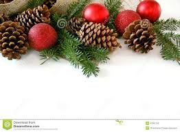 Pine Cone Christmas Trees For Sale by Christmas Bulb Pine Cone And Evergreen Border Isolated On White