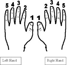 اجزاء جسم الإنسان باللغات الثلاثة. images?q=tbn:ANd9GcS