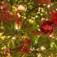 Kinds Of Christmas Trees by Prelit Christmas Trees Guide