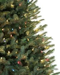 Pine Cone Christmas Trees For Sale by Balsam Fir Christmas Trees Balsam Hill