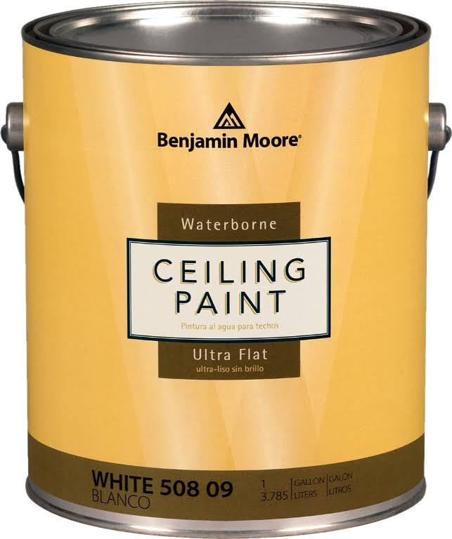 Benjamin Moore Waterborne Ceiling Paint - White