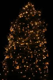 Colorado Springs Christmas Tree Permits by 100 Christmas Tree Permits Durango Colorado Blog Gateway