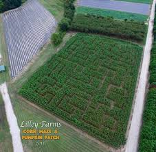 Pas Pumpkin Patch 2017 by Lilley Farms Home Facebook