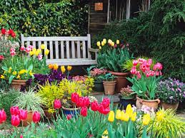 Flowers For Flower Beds by The Right Time For Tulips Hgtv