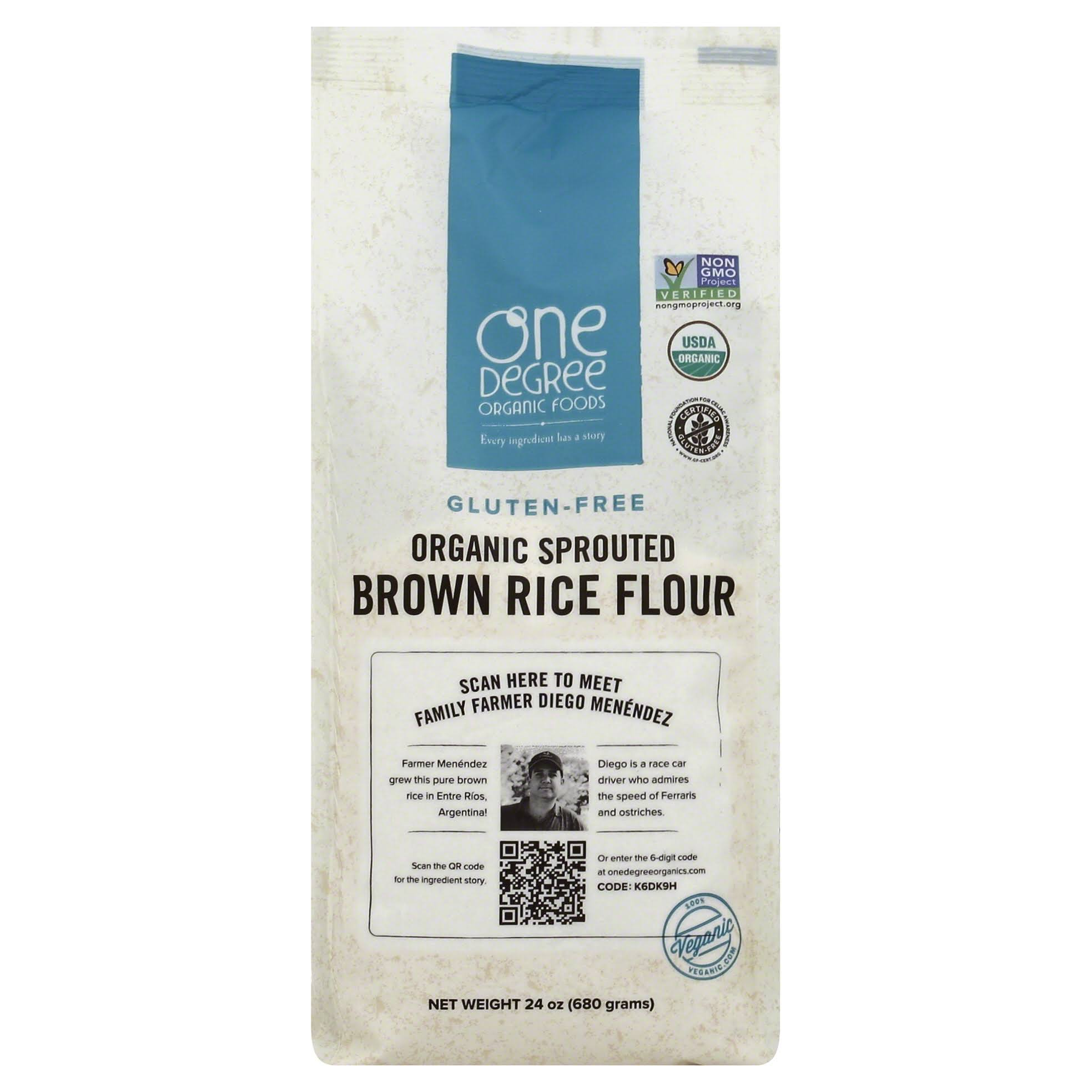 Organic Sprouted Brown Rice Flour - 24oz