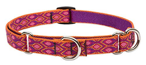 Lupine Pet Martingale Collar - Alpen Glow