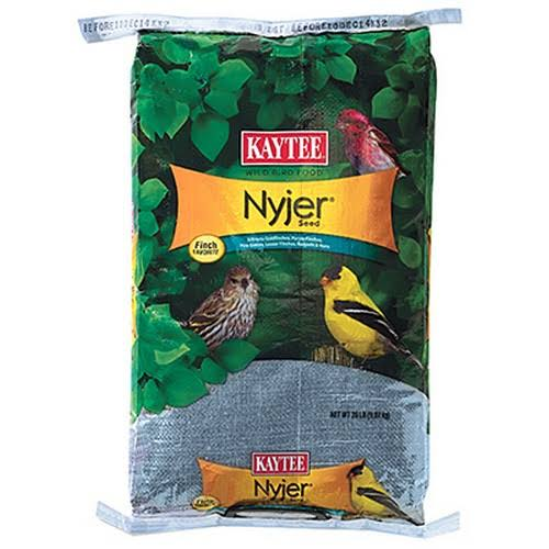 Kaytee 100033693 Nyjer Thistle Wild Bird Food - 20lbs