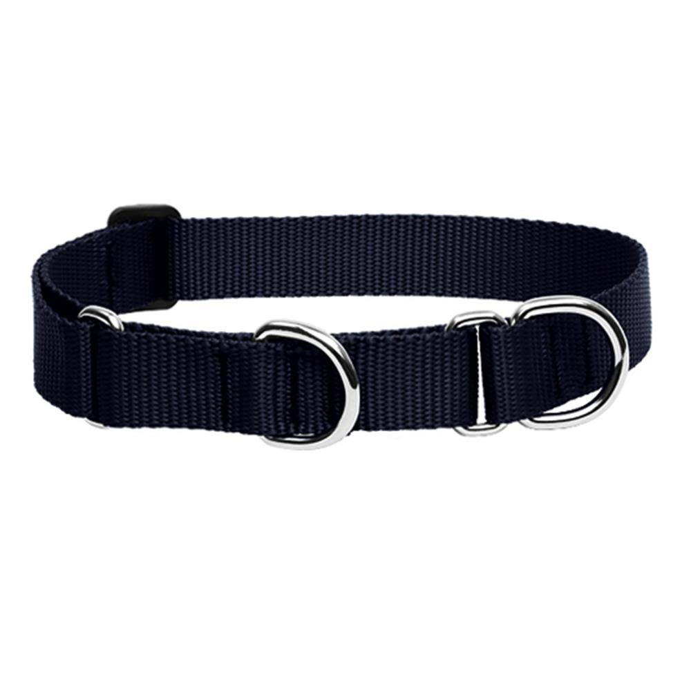 Lupine Designer Combo Dog Collar - Black