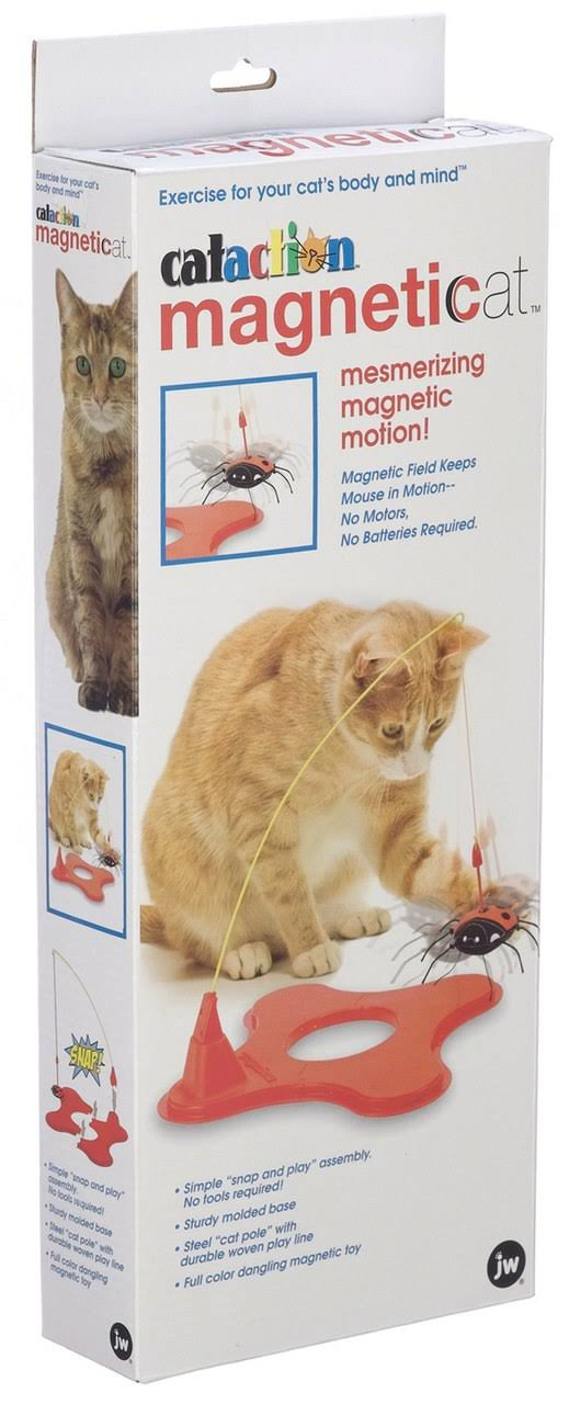 Jw Pet Company Cataction Magneticat Toy