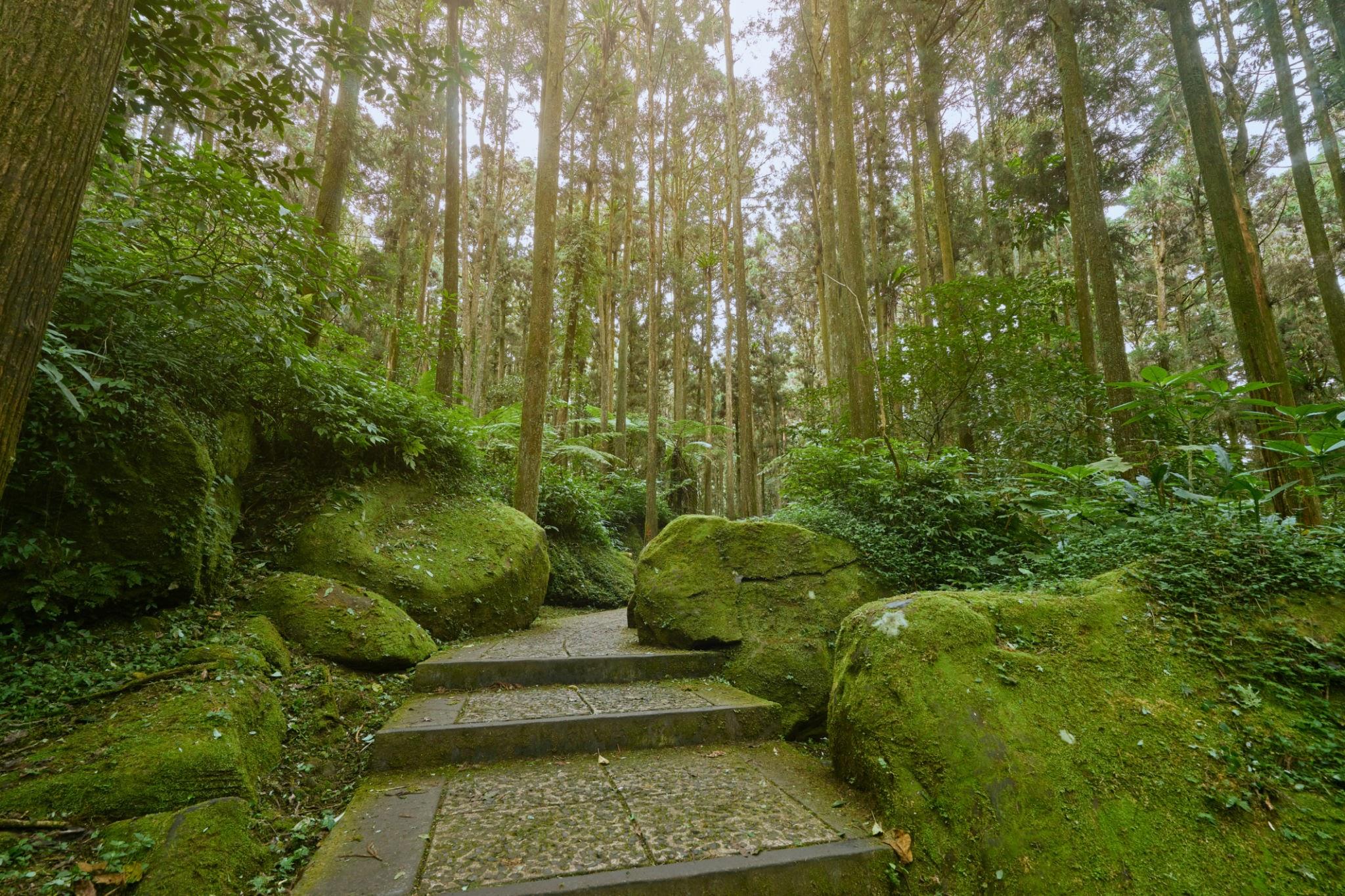 Xitou Nature Education Area