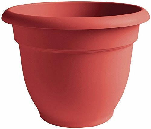 Bloem Ariana Self Watering Planter - Red, 12""