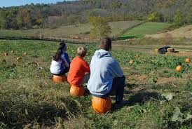 Best Pumpkin Patch Richmond Va by Trick Or Treat 5k And Family Fun Run Virginia Is For Lovers