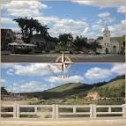 imagem de Jaqueira Pernambuco n-12