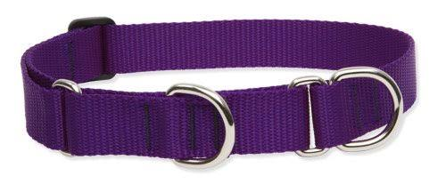 LupinePet Martingale Combo Collar - Purple, 1x15-22 in