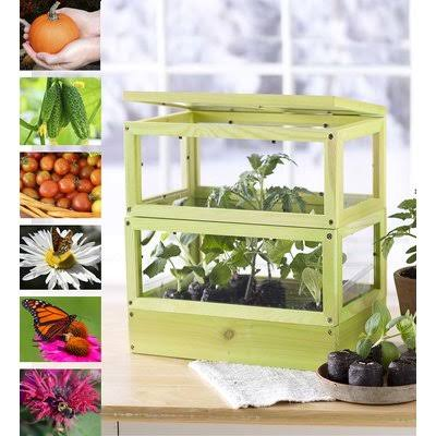 Hearthsong Grow-up Greenhouse Kit