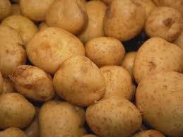 bitkisel patates