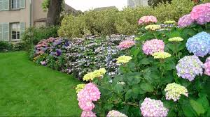 Flowers For Flower Beds enhance the beauty of your home with a flower garden youtube