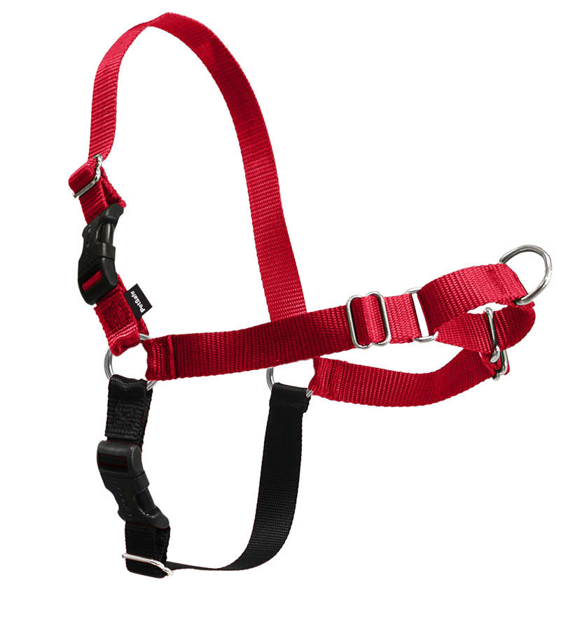 PetSafe Easy Walk Dog Harness - Red/Black, Petite/Small