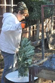 Christmas Tree Farms Near Lincoln Nebraska by Tis The Season For Trees And Wreaths News Beatricedailysun Com