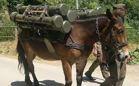 Como arrancan las guerras?-http://t1.gstatic.com/images?q=tbn:ANd9GcTPyDddNAUrgQVJKCvfOBdLCmjpIrHFxF34M_MCeWZccdTSwDdl