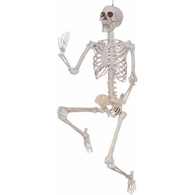 Pose and Hold Lifesize Skeleton Halloween Prop Decoration
