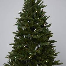 Balsam Christmas Tree Australia by Santa U0027s Best 108 Function Pre Lit European Fir Christmas Tree