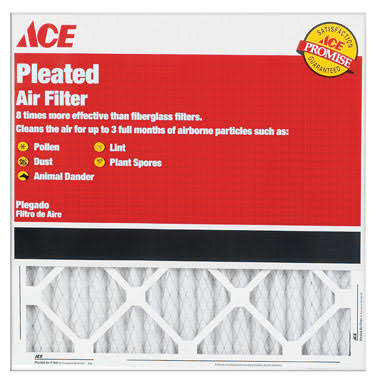 Ace Air Filter - Pleated