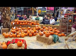 Free Pumpkin Patches In Colorado Springs by Corn Mazes And Pumpkin Patches Near New York 2017 Axs