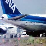 全日空61便ハイジャック事件, 全日本空輸
