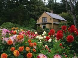 Flowers For Flower Beds by Landscape Flower Garden Garden Ideas