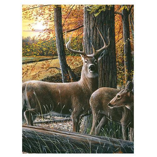 "Rivers Edge Products 16"" x 12"" LED Wall Art - Deer"