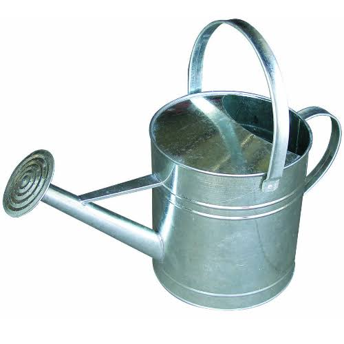 Double L Group Galvanized Watering Can - 10qt, Silver