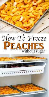 Pumpkin Patch Clanton Al by 25 Best Peach Water Ideas On Pinterest Peach Alcohol Drinks