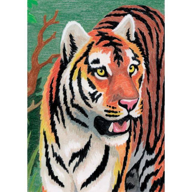 "Royal & Langnickel Mini Color Pencil by Number Kit 5""x7"" Jungle Tiger"