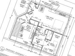 Basement Bathroom Designs Plans by Bright U0026 Bold Basement Bathroom Go Home Design U0026 Decor