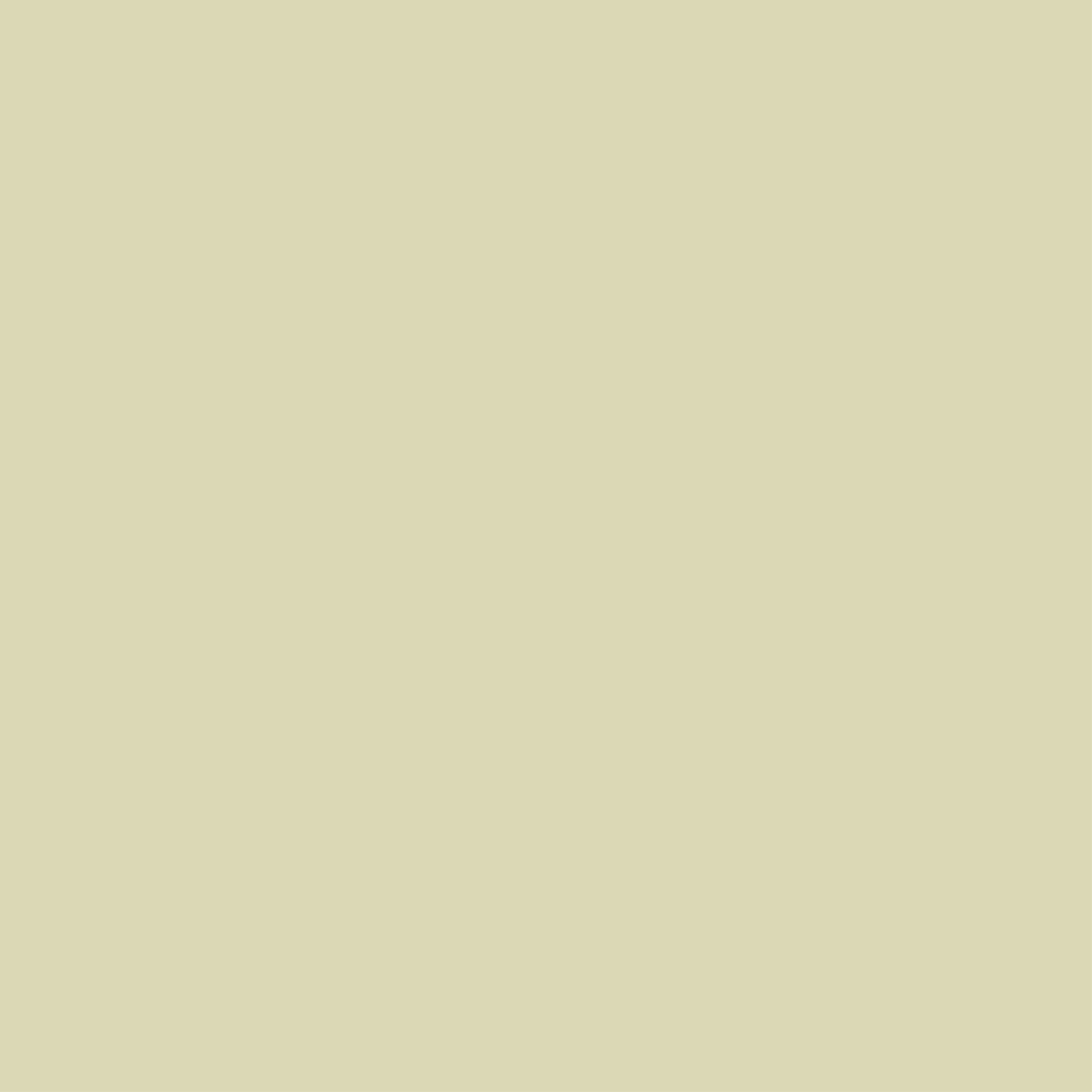 Farrow & Ball Estate No.206 Green Ground - Emulsion Paint - 100ml