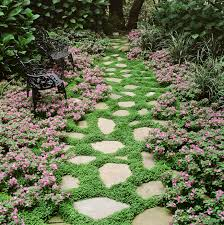 Flowers For Flower Beds by 11 Best Ground Cover Flowers U0026 Plants Low Growing Perennial Flowers