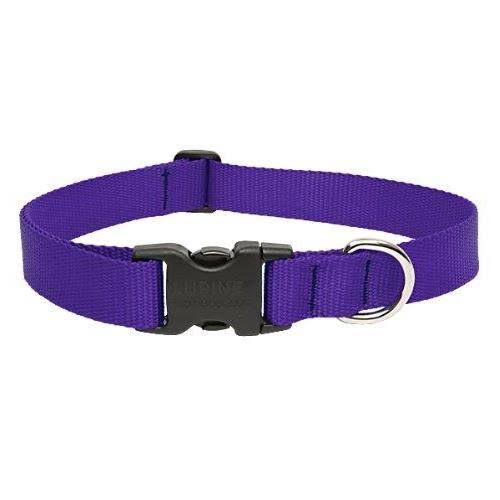 "LupinePet Basics Adjustable Dog Collar - 1"" x 16-28"", Purple"
