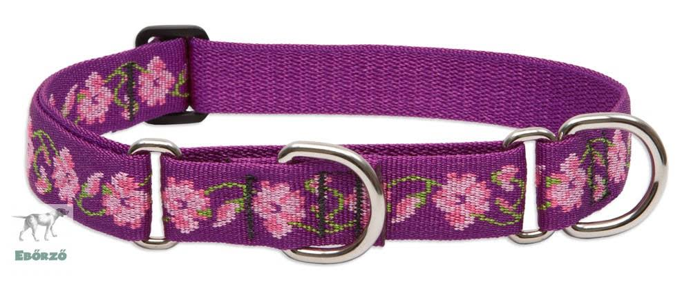 "LupinePet Originals 1"" Rose Garden 15-22"" Martingale Collar for Medium and Larger Dogs"