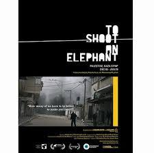 Disparar a un elefante